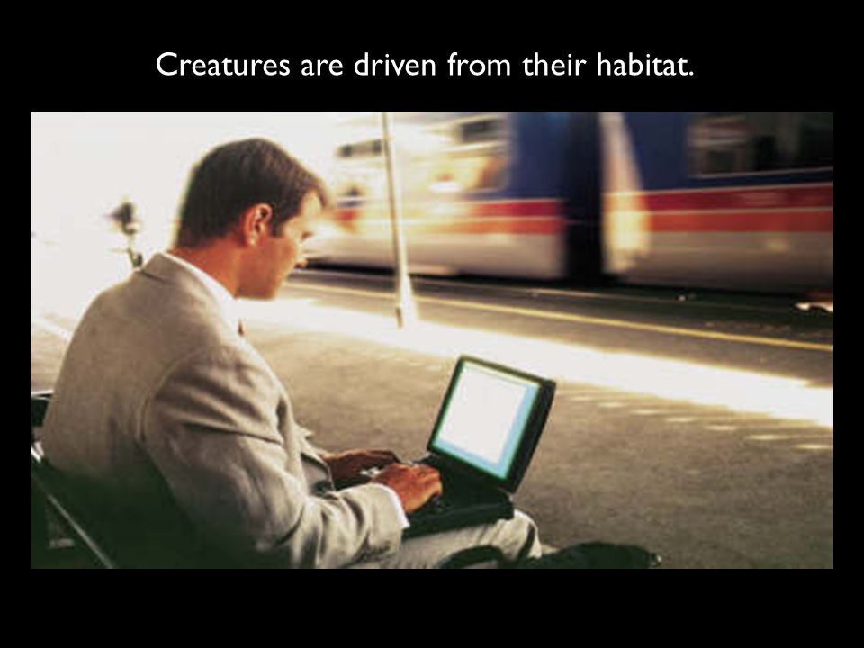 Creatures are driven from their habitat.