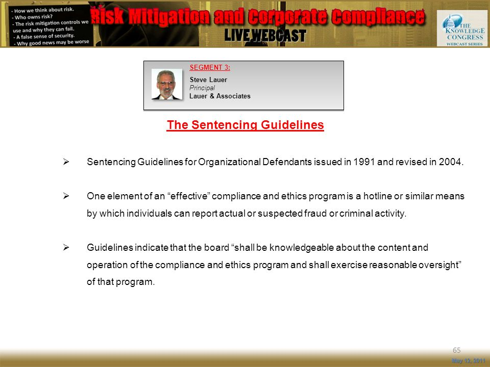 The Sentencing Guidelines