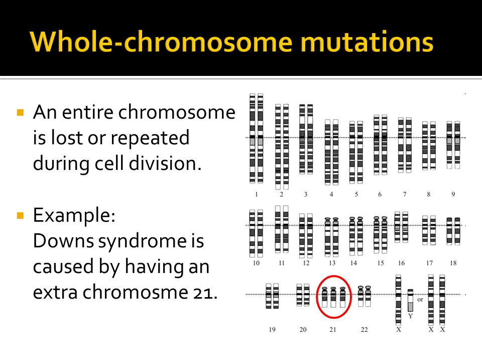 Whole-chromosome mutations