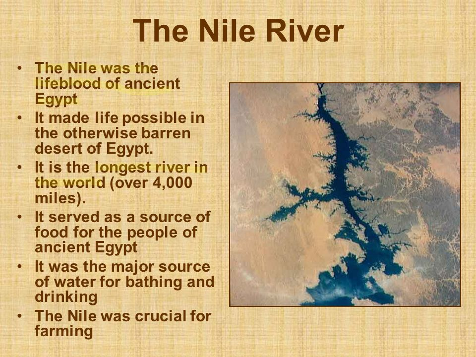 The Nile River The Nile was the lifeblood of ancient Egypt
