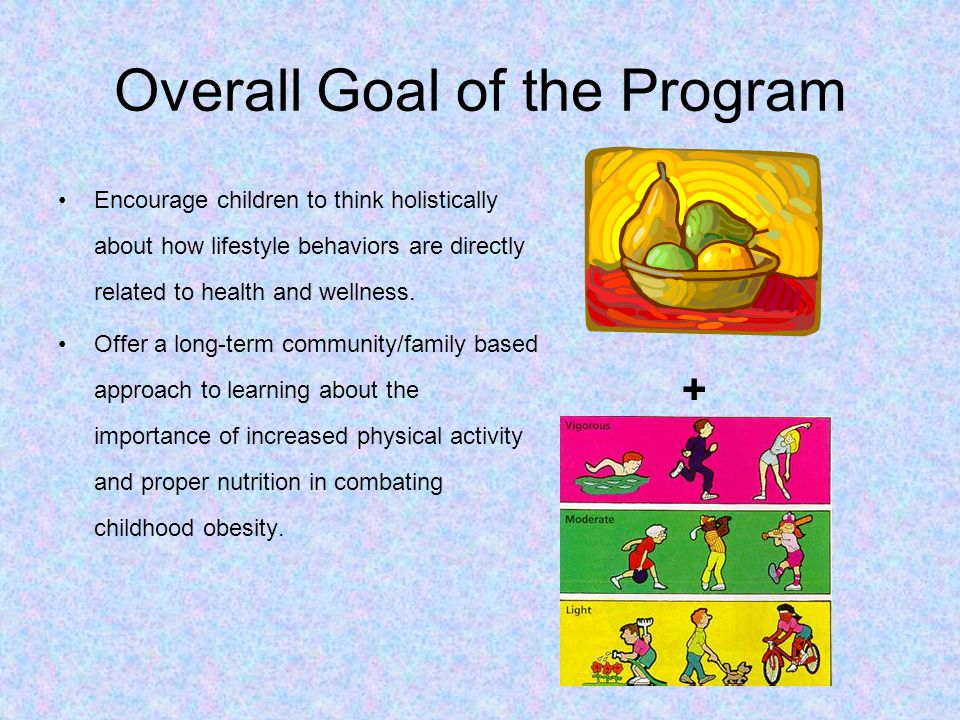 Overall Goal of the Program