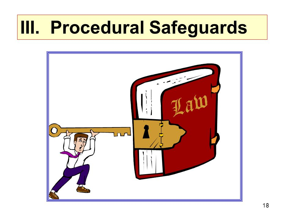 III. Procedural Safeguards