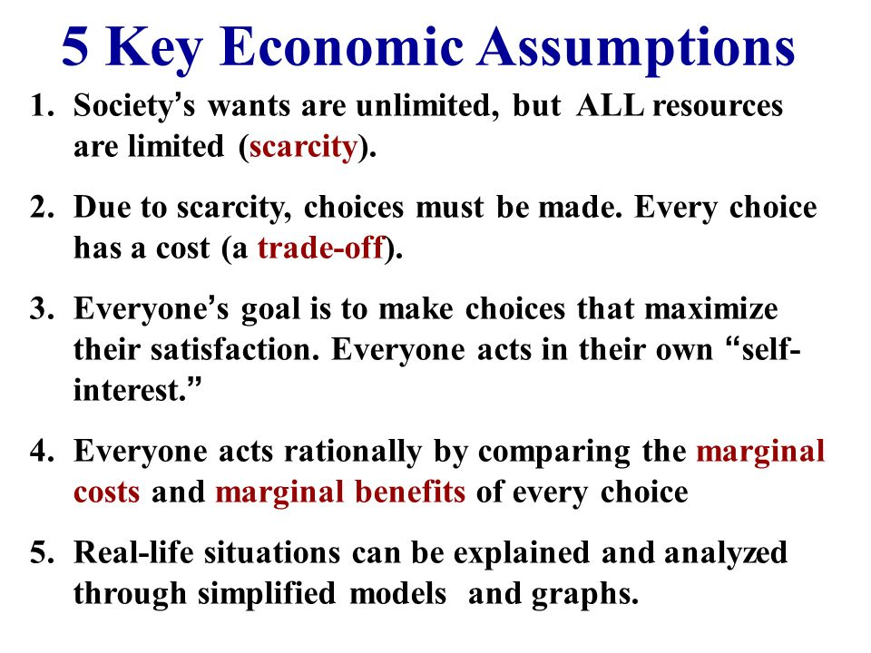 What Are The Basic Assumptions Of Economics