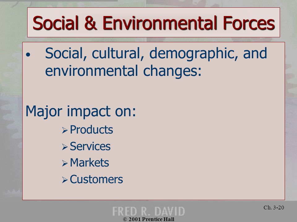 Social & Environmental Forces