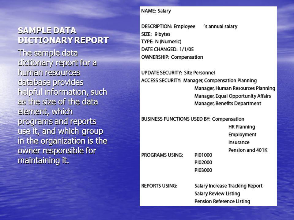 SAMPLE DATA DICTIONARY REPORT