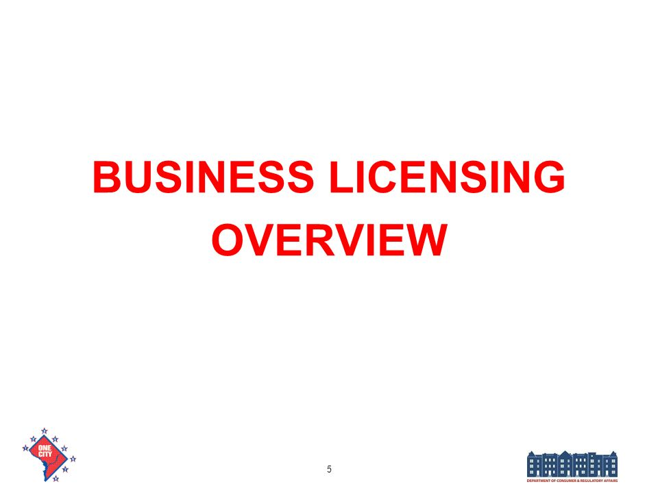 BUSINESS LICENSING OVERVIEW