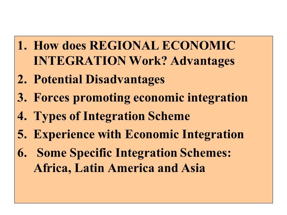 How does REGIONAL ECONOMIC INTEGRATION Work Advantages