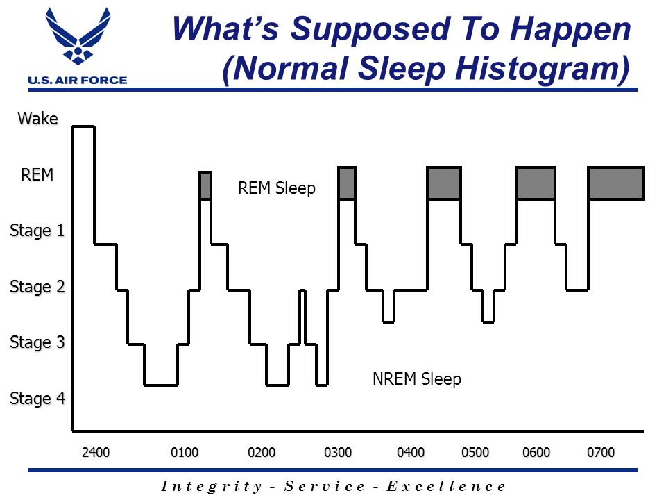 What's Supposed To Happen (Normal Sleep Histogram)