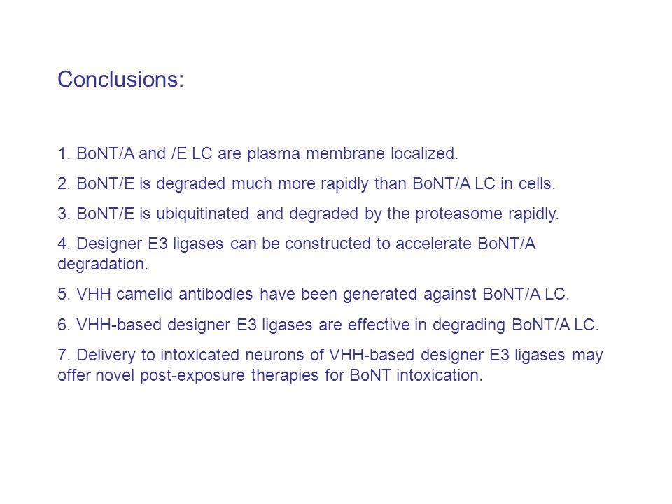 Conclusions: 1. BoNT/A and /E LC are plasma membrane localized.