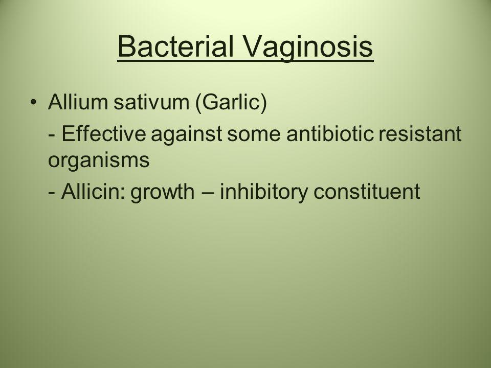 Bacterial Vaginosis Allium sativum (Garlic)