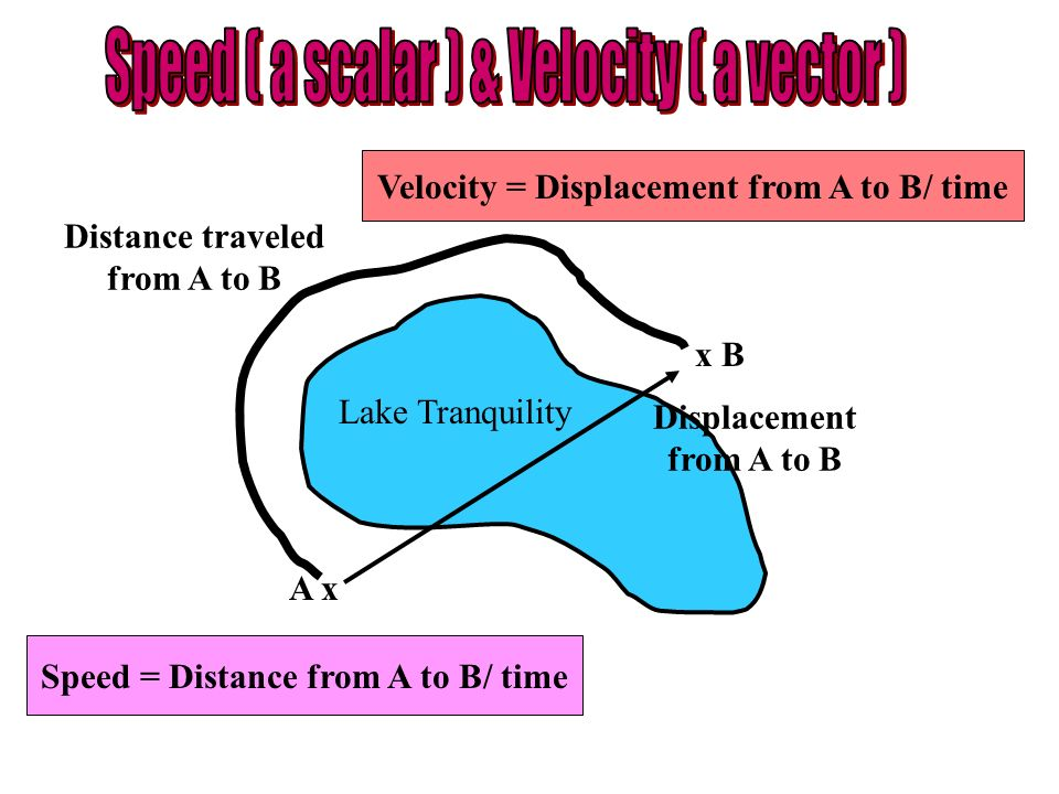 Speed ( a scalar ) & Velocity ( a vector )