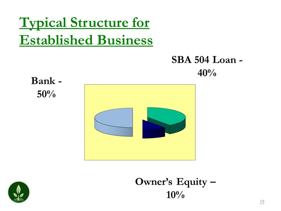 Typical Structure for Established Business