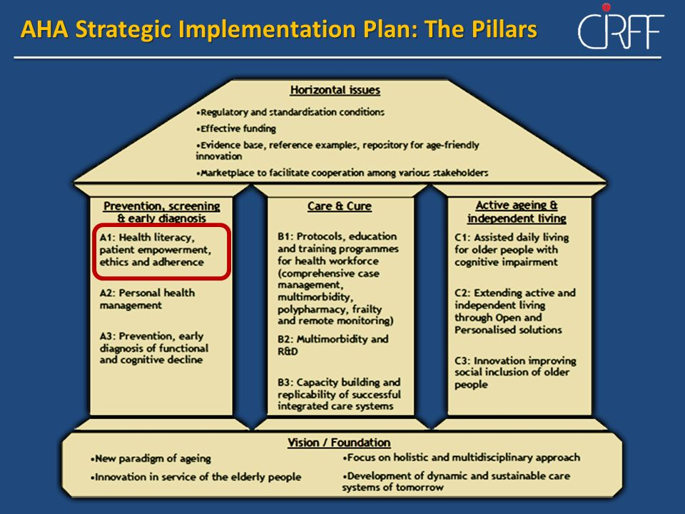 AHA Strategic Implementation Plan: The Pillars