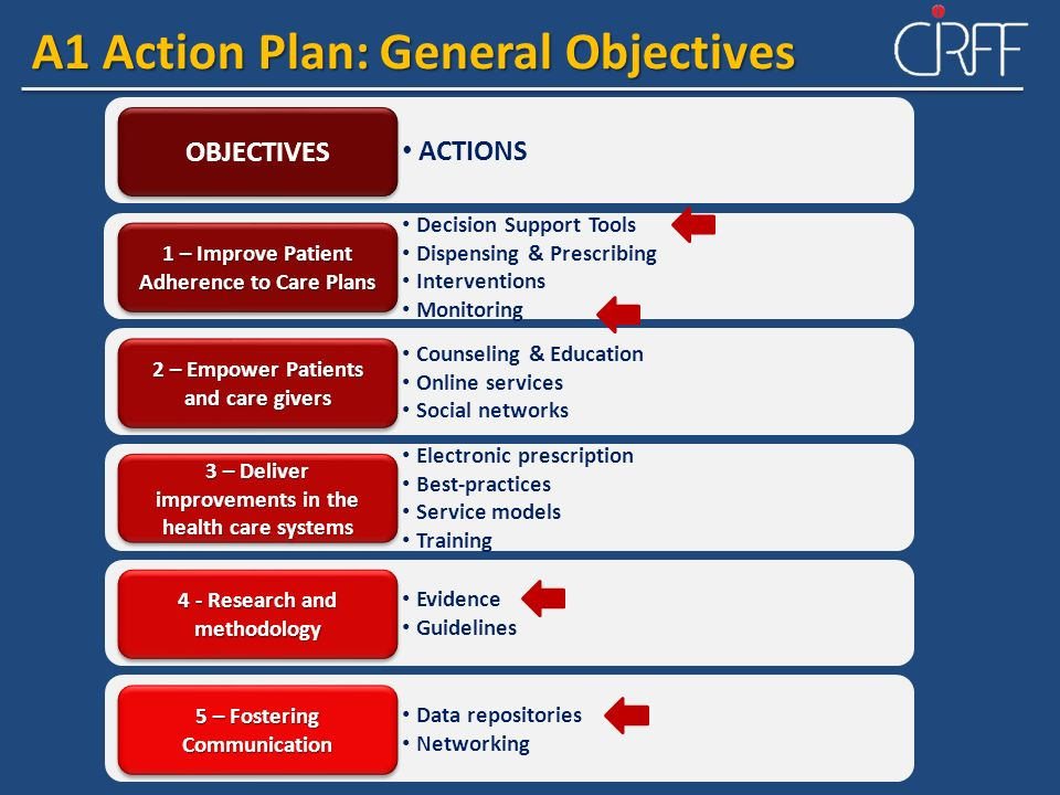A1 Action Plan: General Objectives