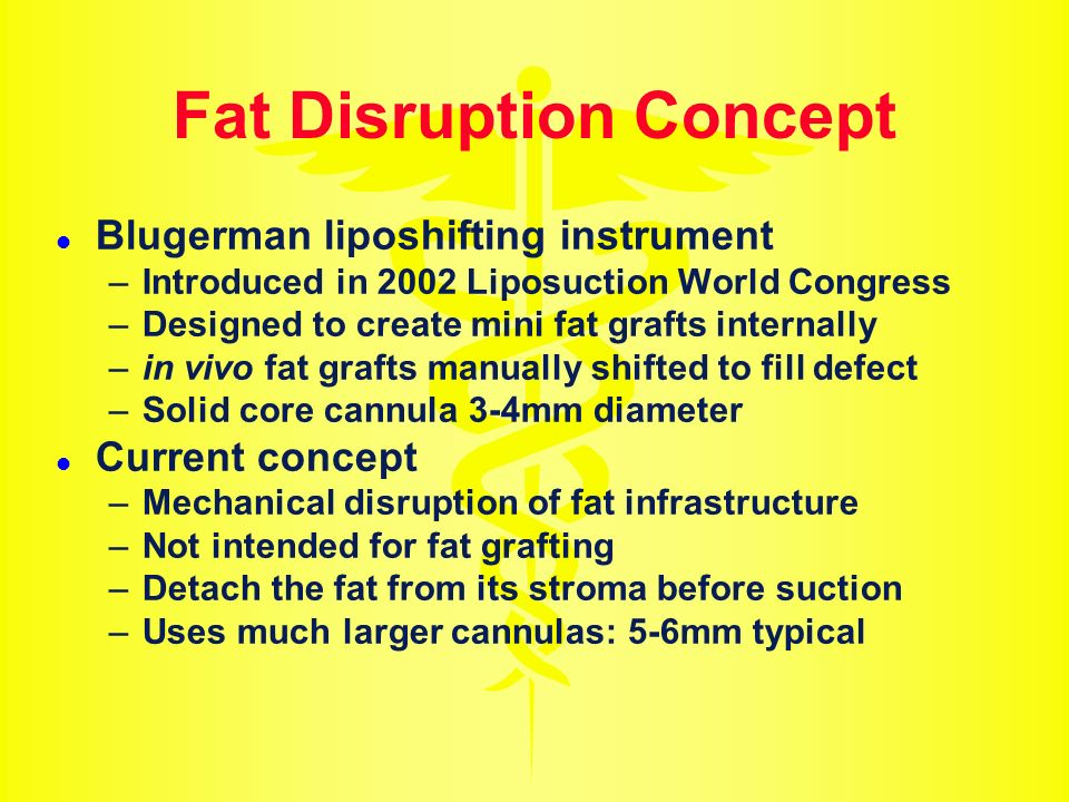 Fat Disruption Concept