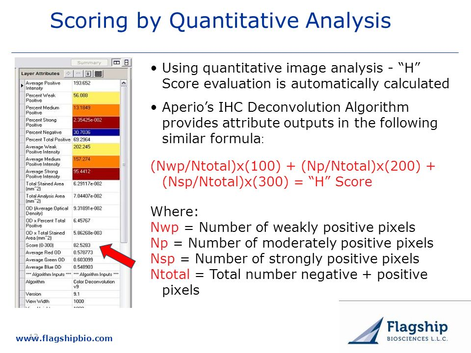 Scoring by Quantitative Analysis