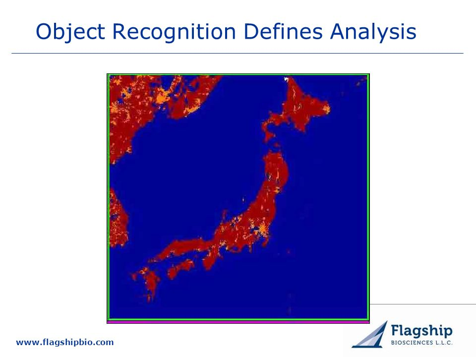 Object Recognition Defines Analysis