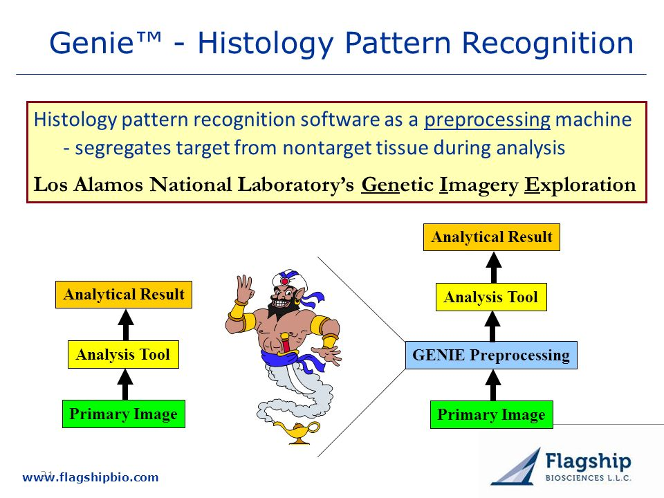 Genie™ - Histology Pattern Recognition