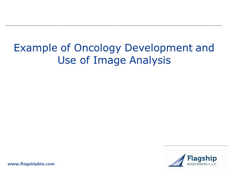 Example of Oncology Development and Use of Image Analysis