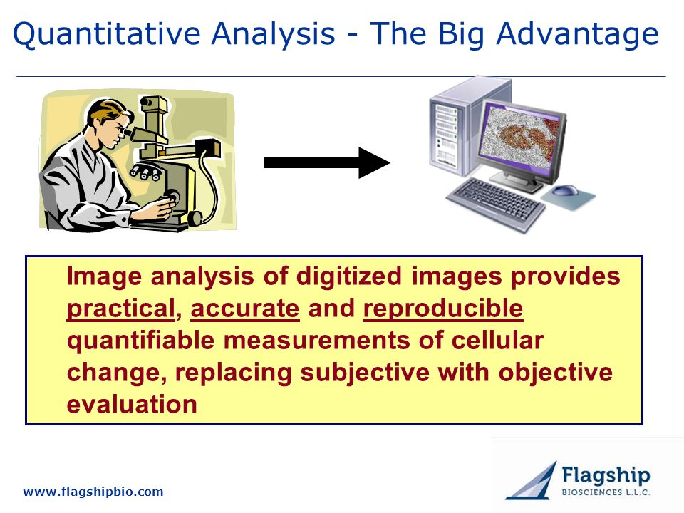 Quantitative Analysis - The Big Advantage