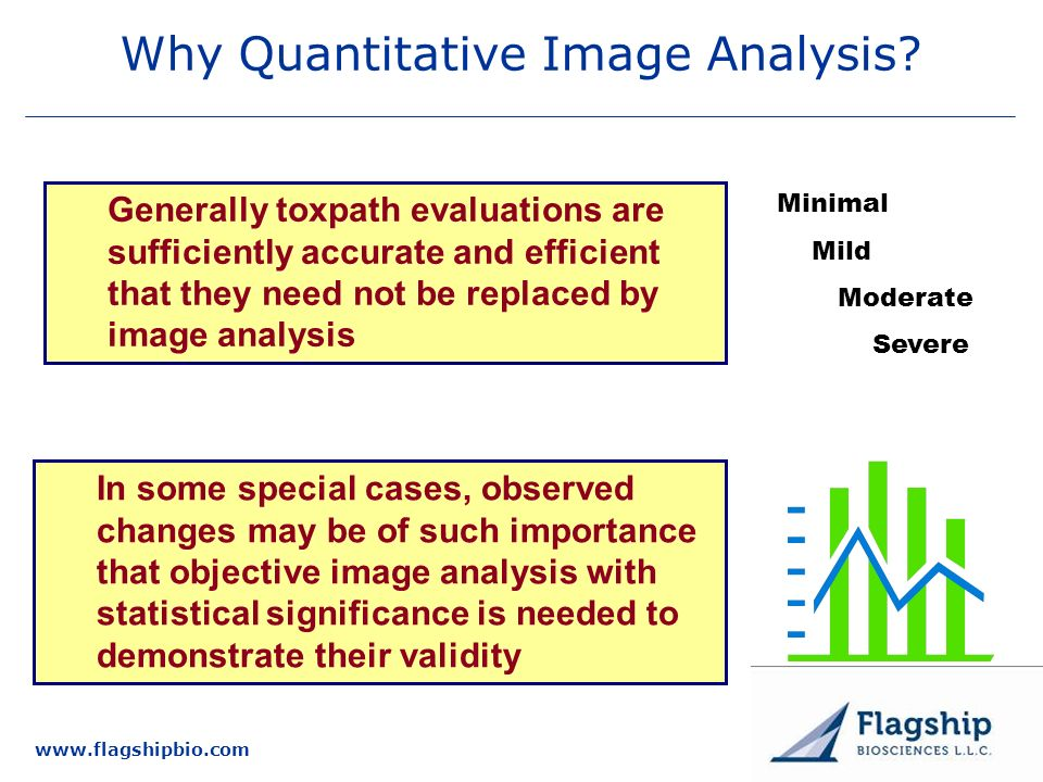 Why Quantitative Image Analysis