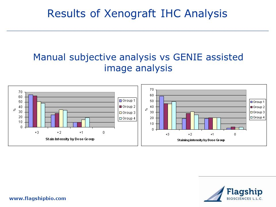 Results of Xenograft IHC Analysis