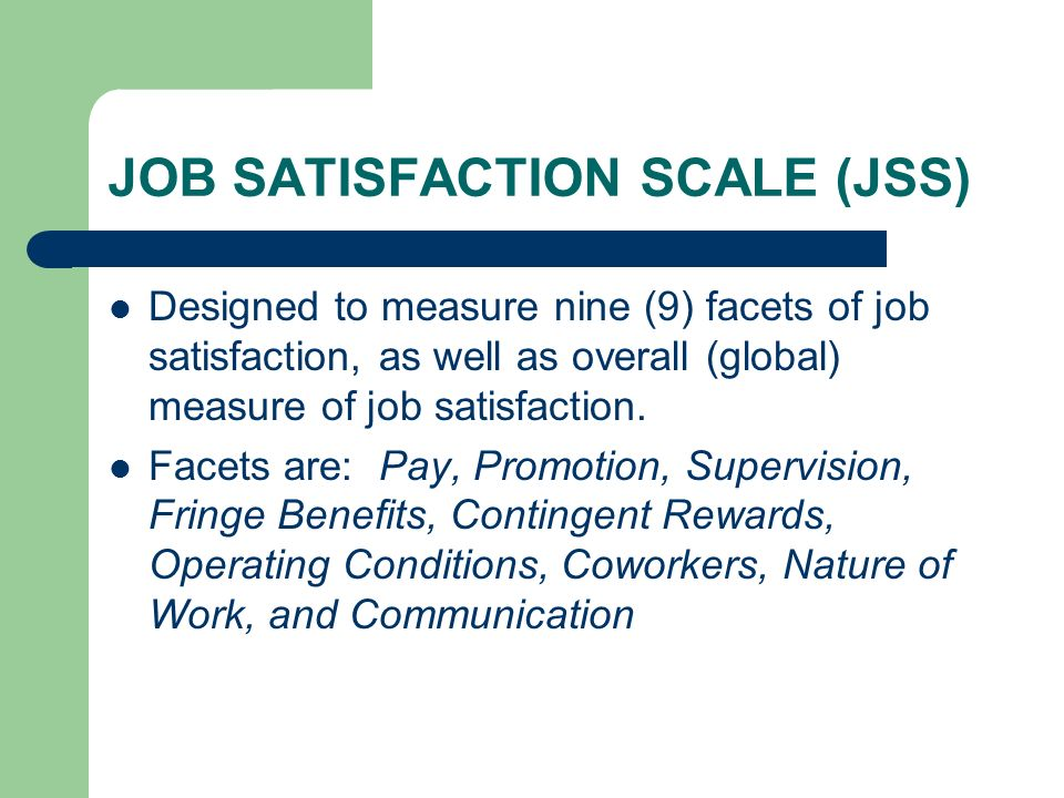 JOB SATISFACTION SCALE (JSS)