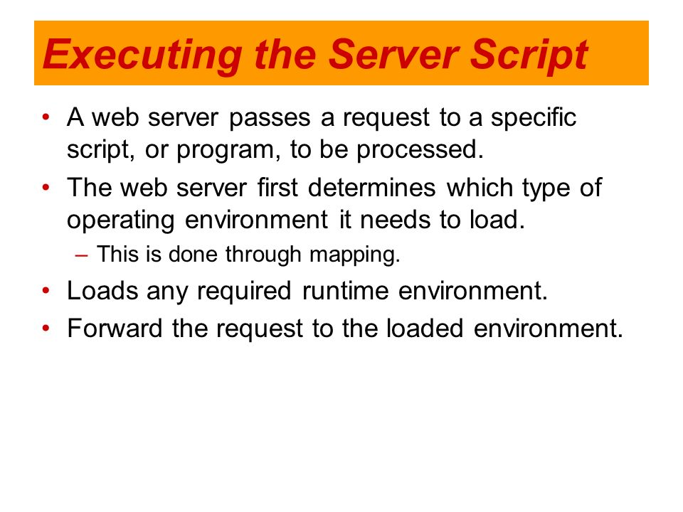 Executing the Server Script