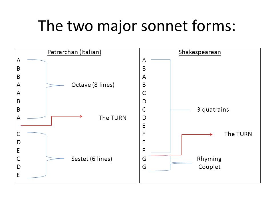 The two major sonnet forms: