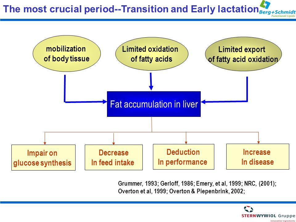 of fatty acid oxidation