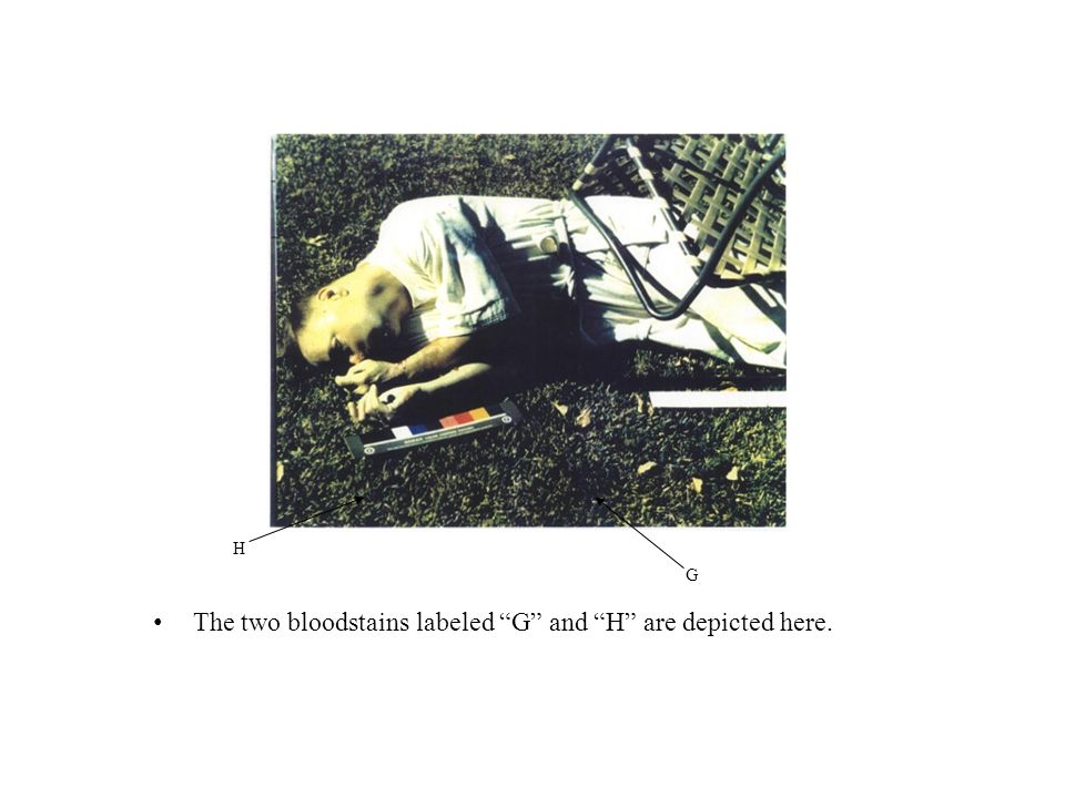 The two bloodstains labeled G and H are depicted here.