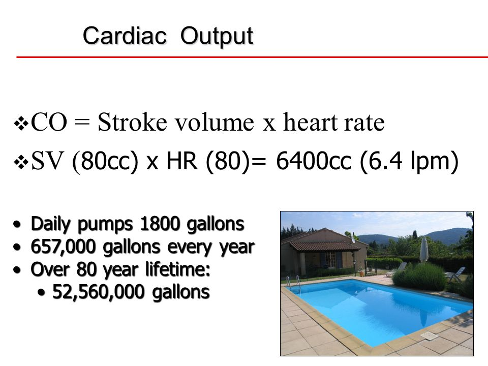 CO = Stroke volume x heart rate SV (80cc) x HR (80)= 6400cc (6.4 lpm)