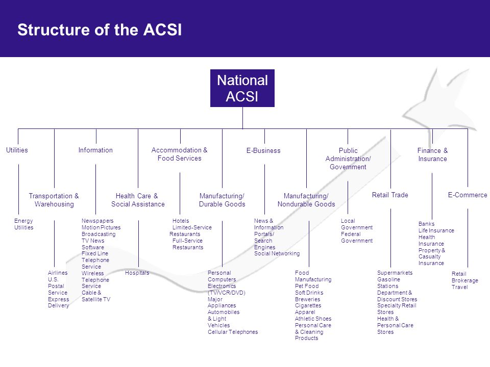 Structure of the ACSI National ACSI Utilities Information