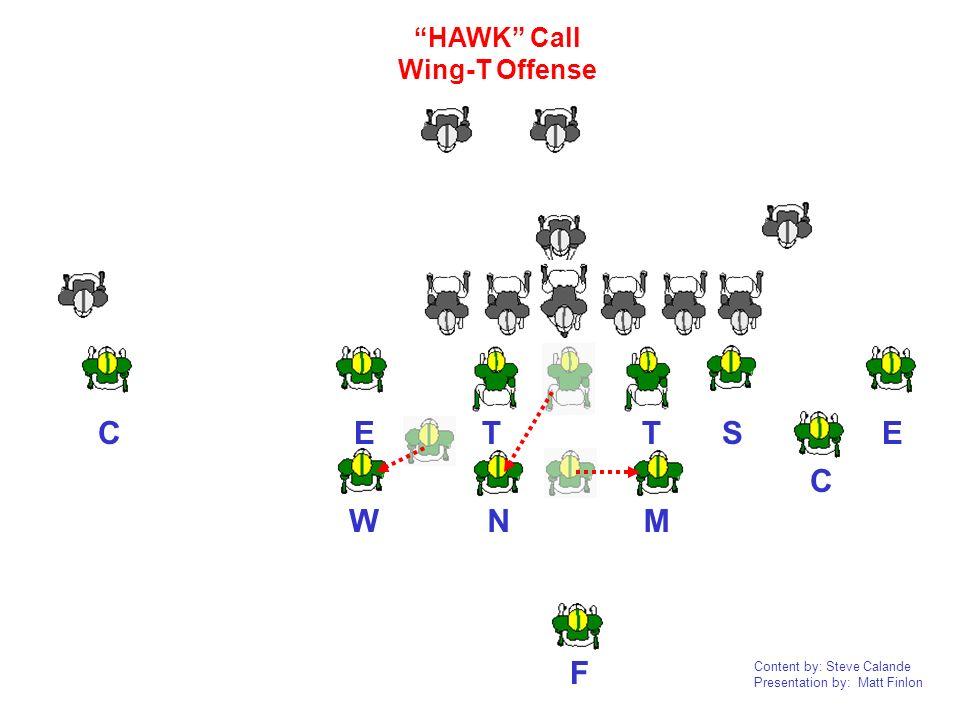 HAWK Call Wing-T Offense C E T T S E C W N M F