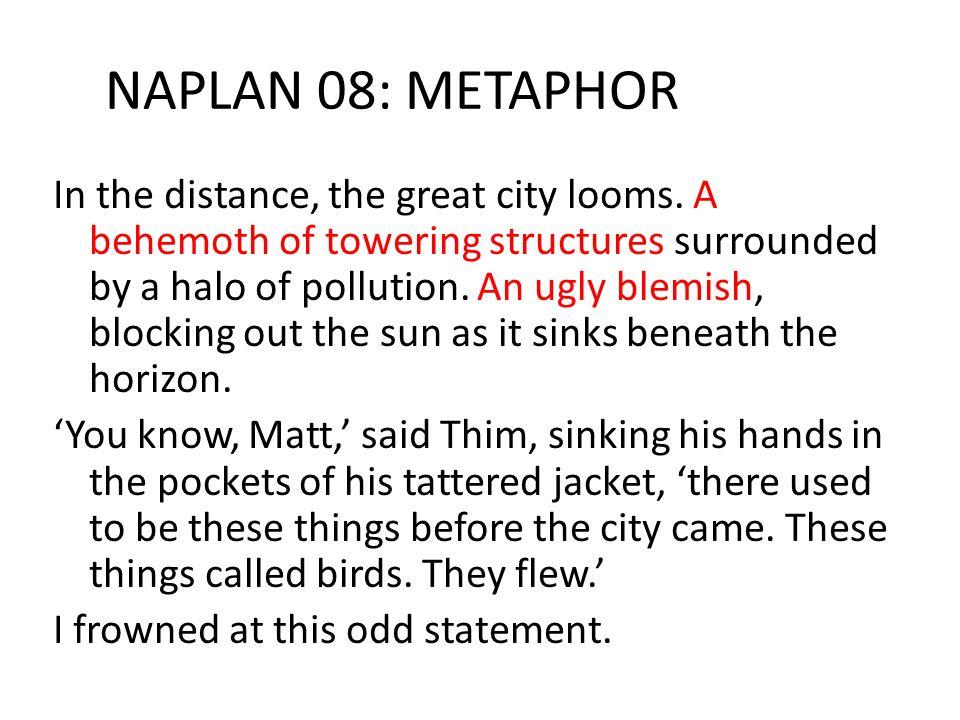 NAPLAN 08: METAPHOR