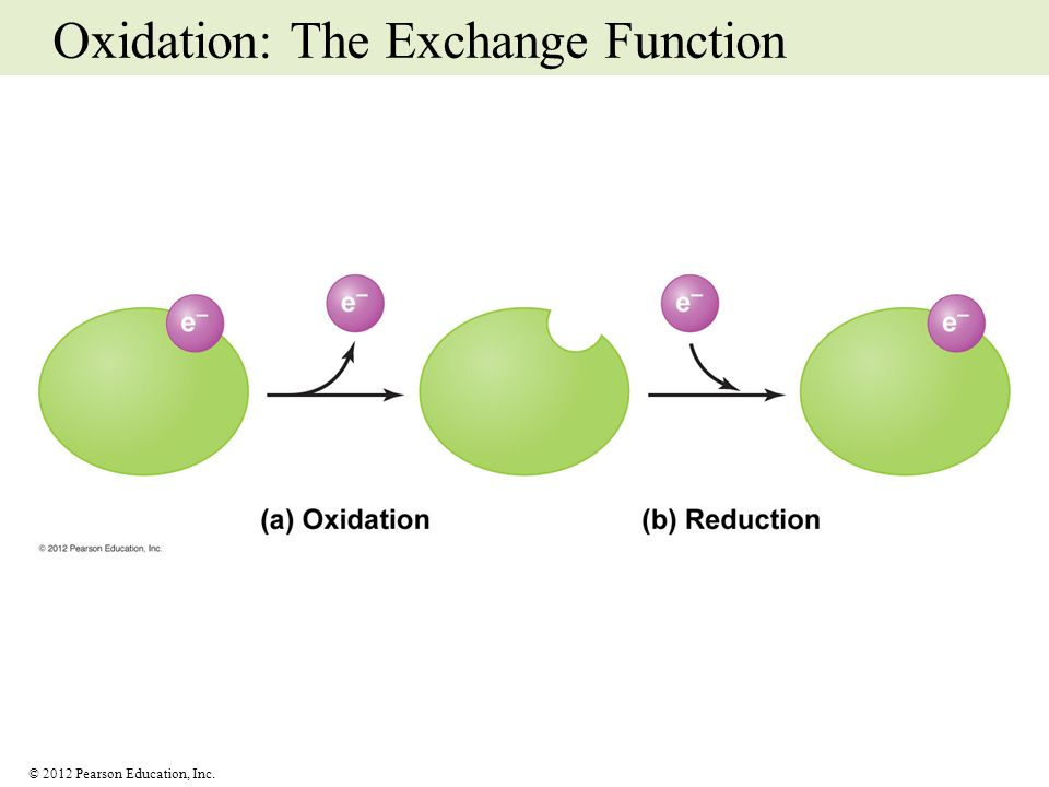 Oxidation: The Exchange Function