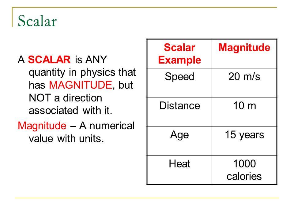 Scalar Scalar Example Magnitude Speed 20 m/s Distance 10 m Age