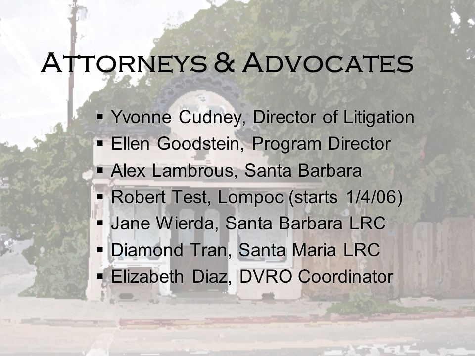 Attorneys & Advocates Yvonne Cudney, Director of Litigation