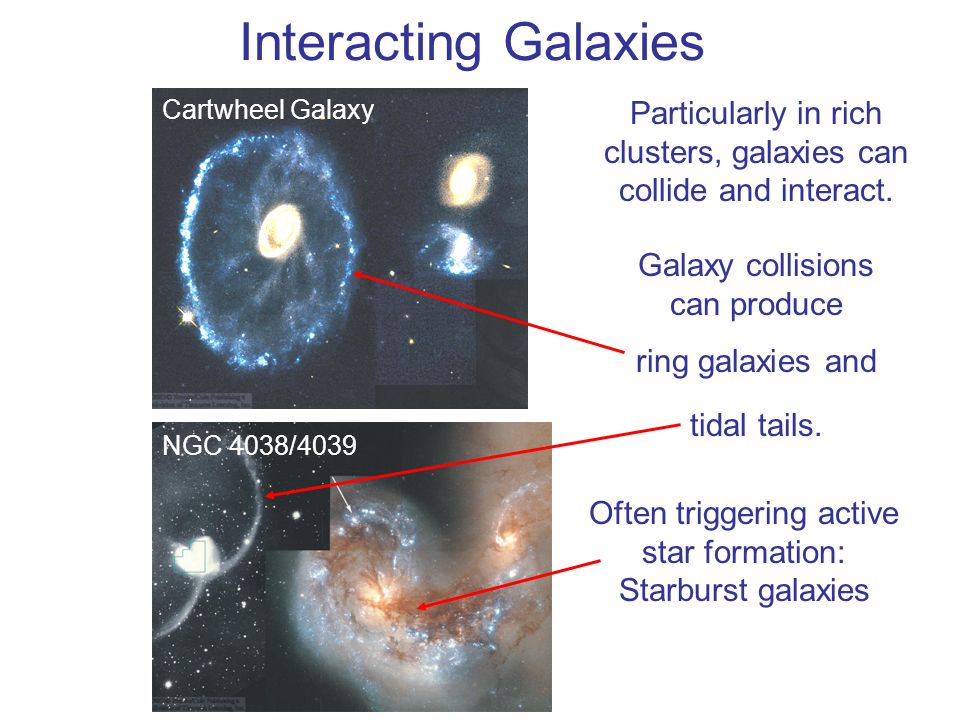 Interacting Galaxies Cartwheel Galaxy. Particularly in rich clusters, galaxies can collide and interact.