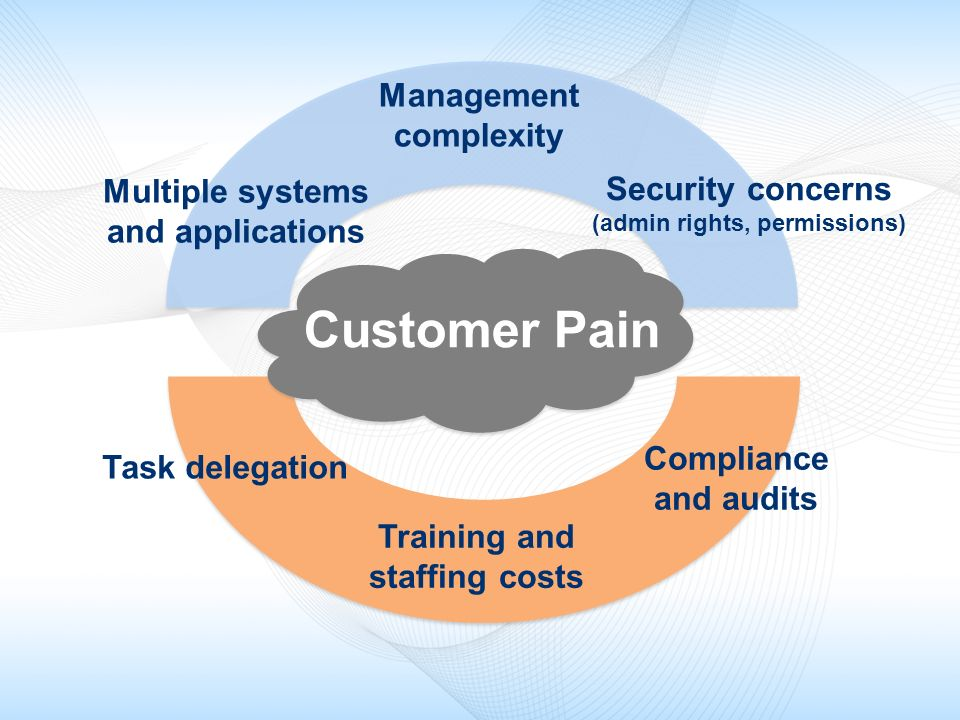 Customer Pain Management complexity Security concerns Multiple systems
