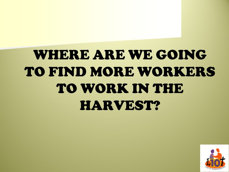 WHERE ARE WE GOING TO FIND MORE WORKERS TO WORK IN THE HARVEST