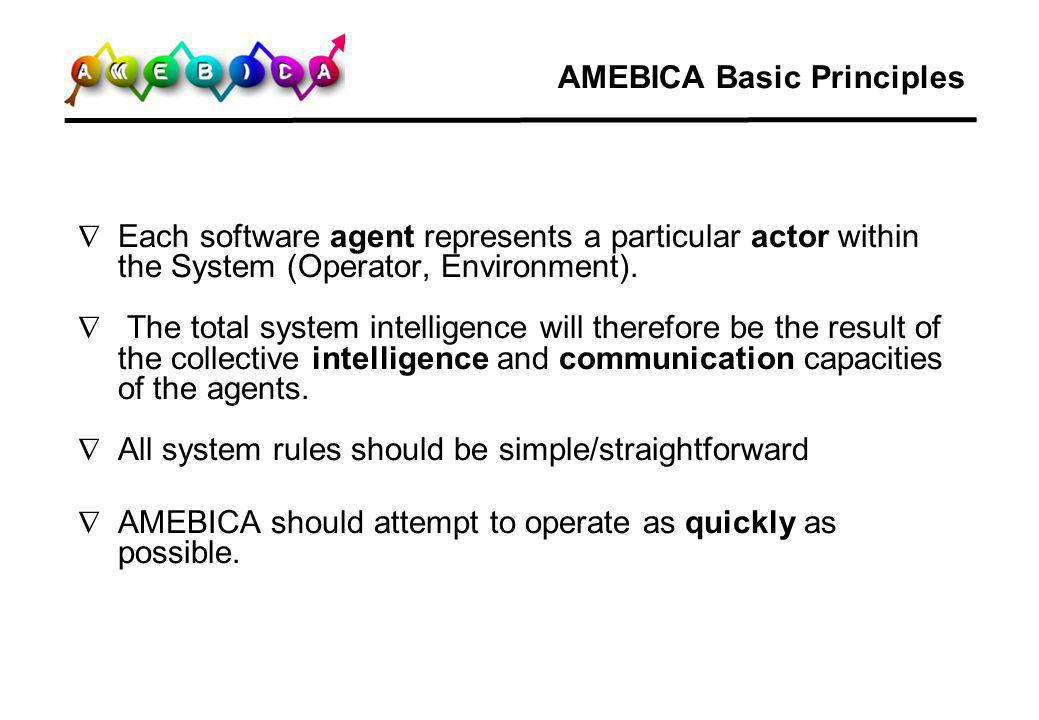 AMEBICA Basic Principles