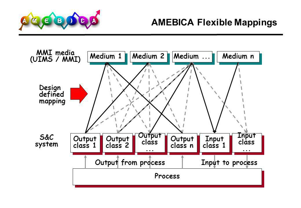AMEBICA Flexible Mappings