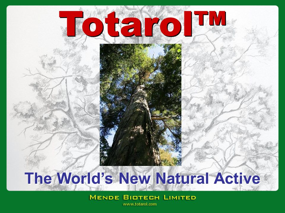 The World's New Natural Active