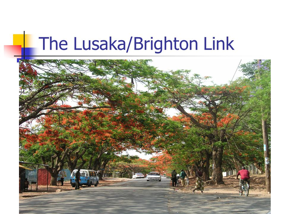 The Lusaka/Brighton Link