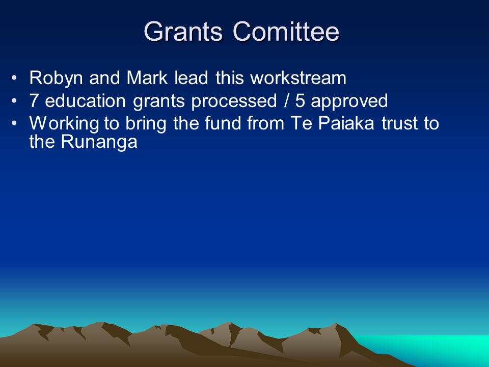 Grants Comittee Robyn and Mark lead this workstream