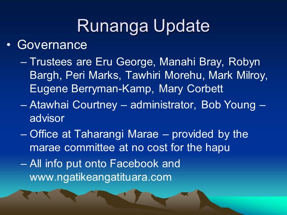 Runanga Update Governance