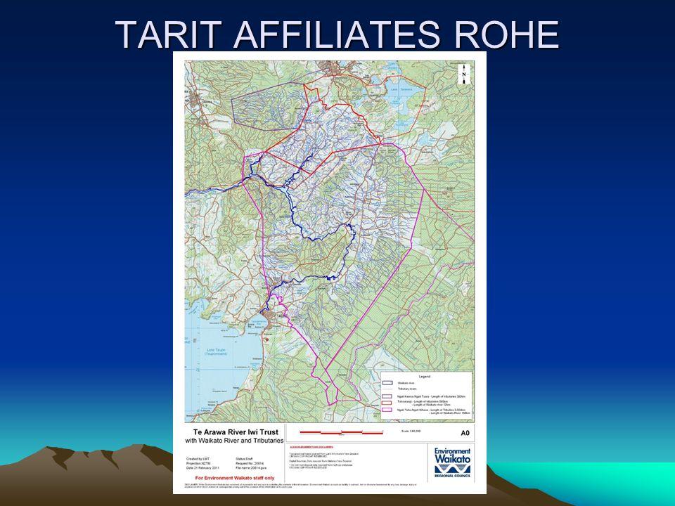 TARIT AFFILIATES ROHE