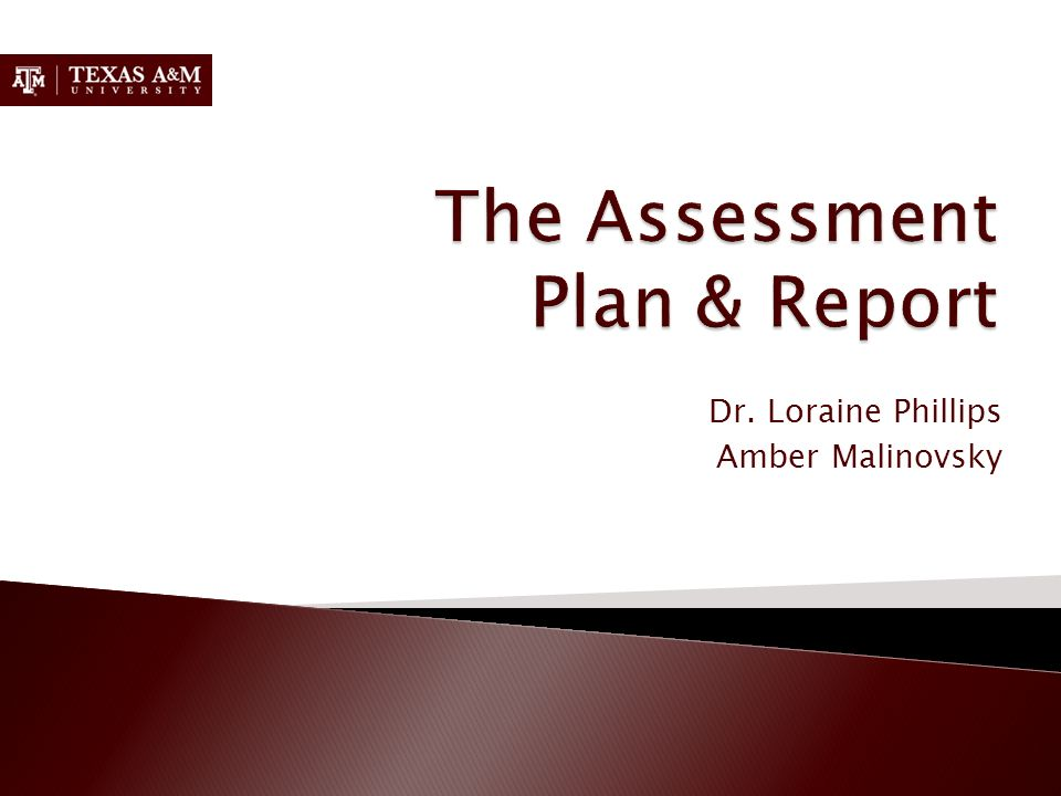 The Assessment Plan & Report