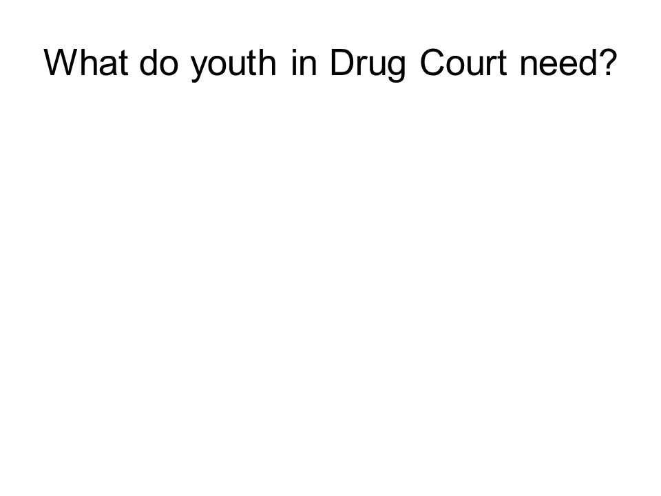What do youth in Drug Court need